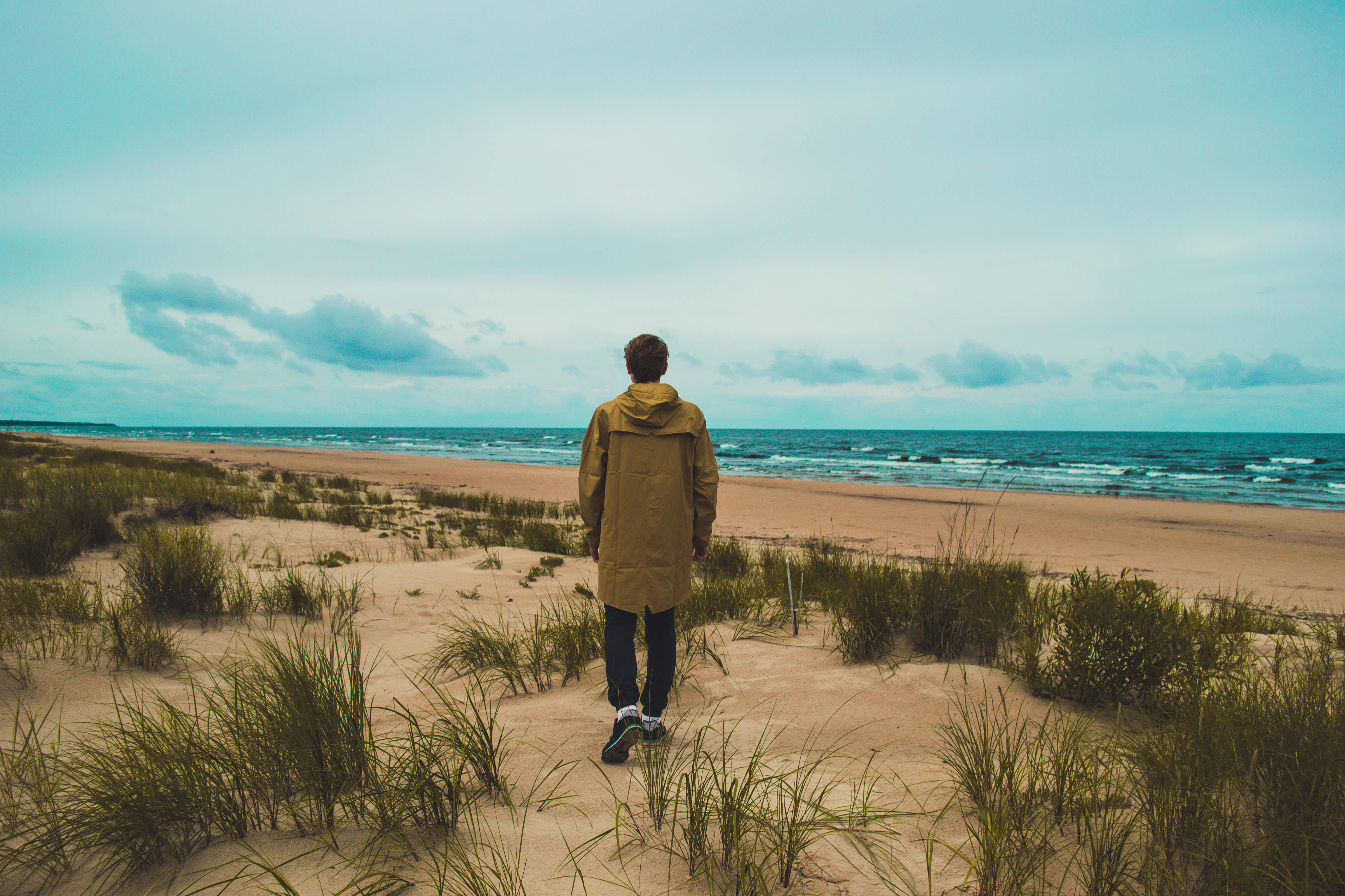 boss-fight-free-high-quality-stock-images-photos-photography-person-beach-walking